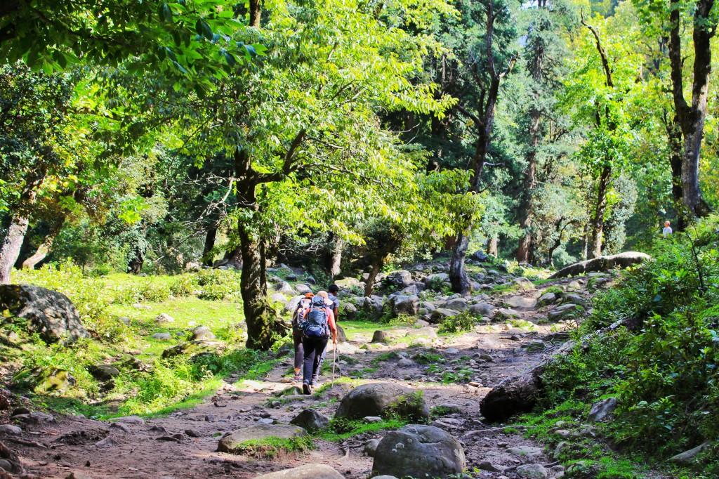 starting the trek from Jobri