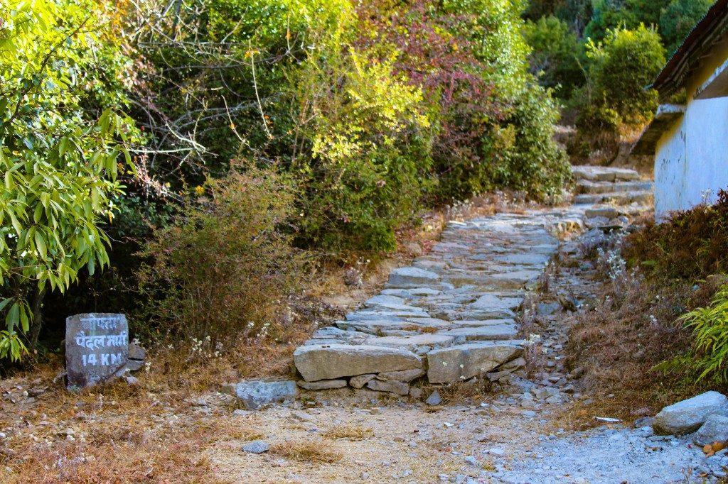 While trekking from Deoriatal to Chopta - Deoriatal Chandrashila Trek