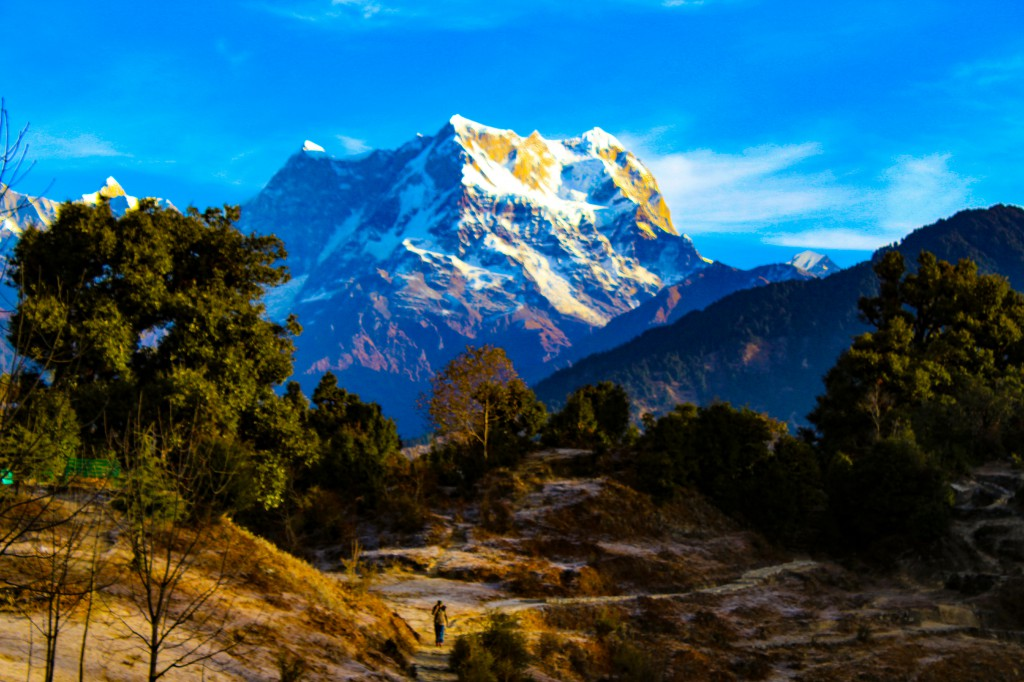 Chaukhamba peak from Deoriatal - Deoriatal Chandrashila Trek