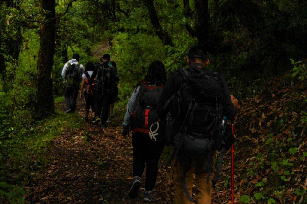 Trek from Deoriatal to Chopta - Deoriatal Chandrashila Trek