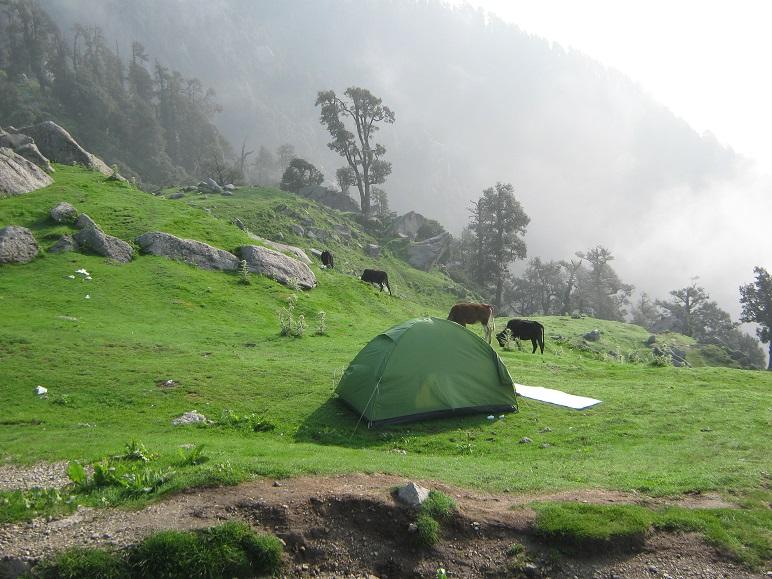 Triund - Dharamshala Itinerary