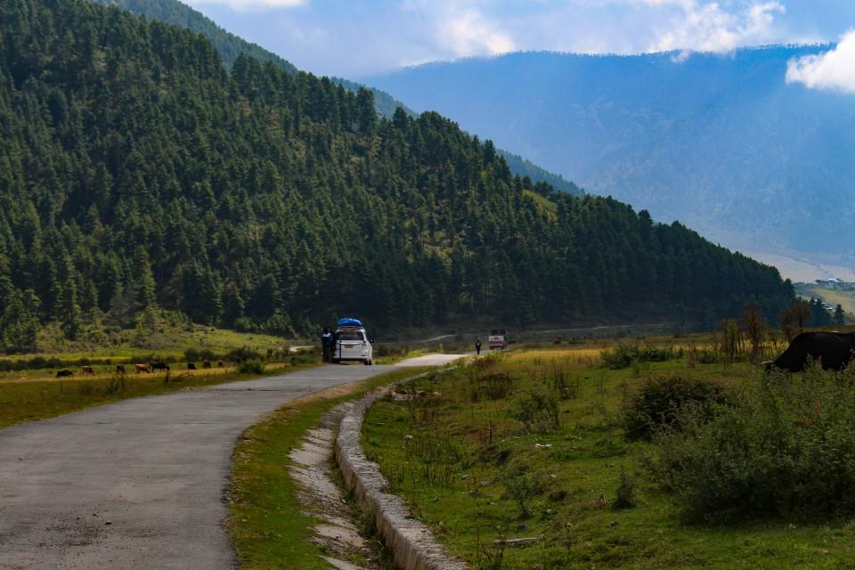 View of Phobjikha Valley - Trip to Bhutan