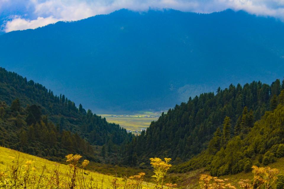 First view of Phobjikha Valley - Trip to Bhutan