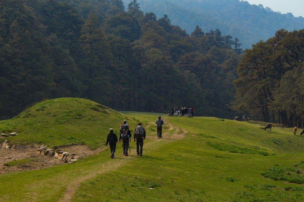 Approaching towards Auli - Pangarchulla Peak