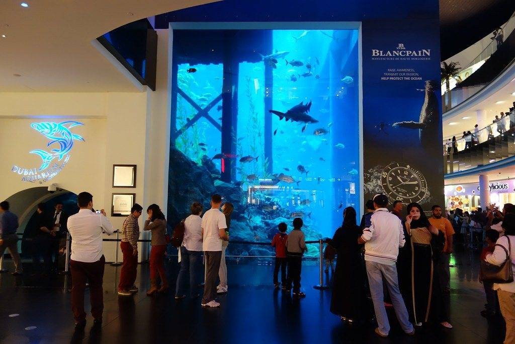 Dubai Aquarium - Best Places to visit in Dubai