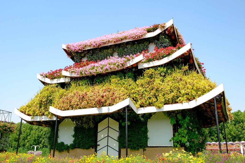 Dubai Miracle Garden - Best Places to visit in Dubai