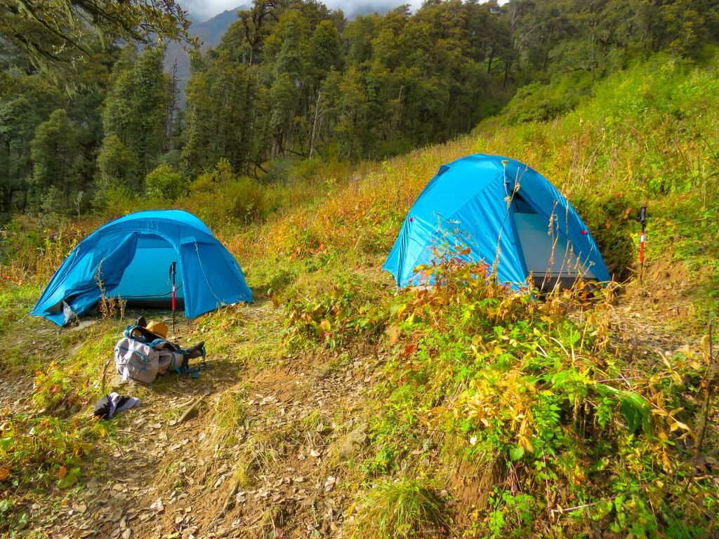 Lower Dhamni Campsite - Bali Pass Trek