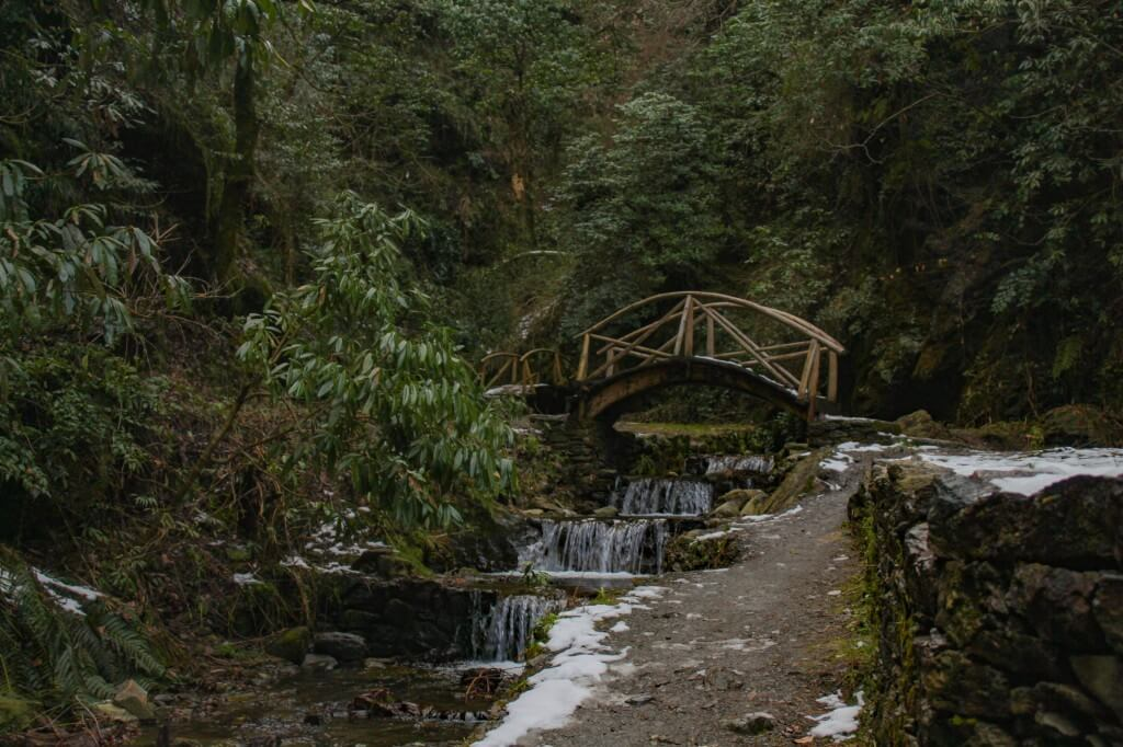 Way to Jibhi Waterfall